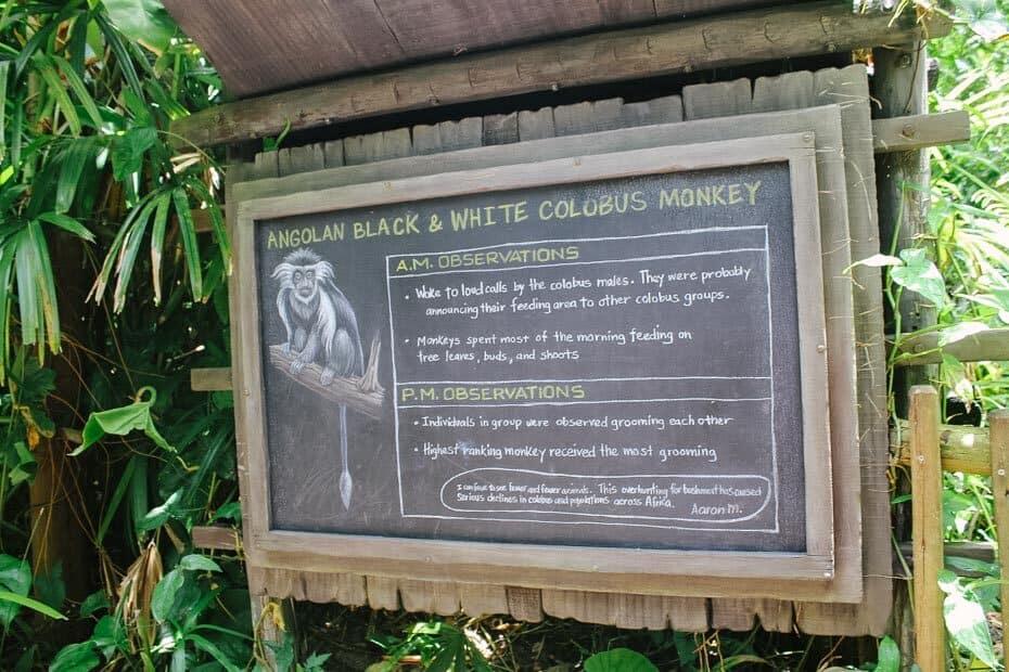 Animals on the Gorilla Falls Exploration Trail